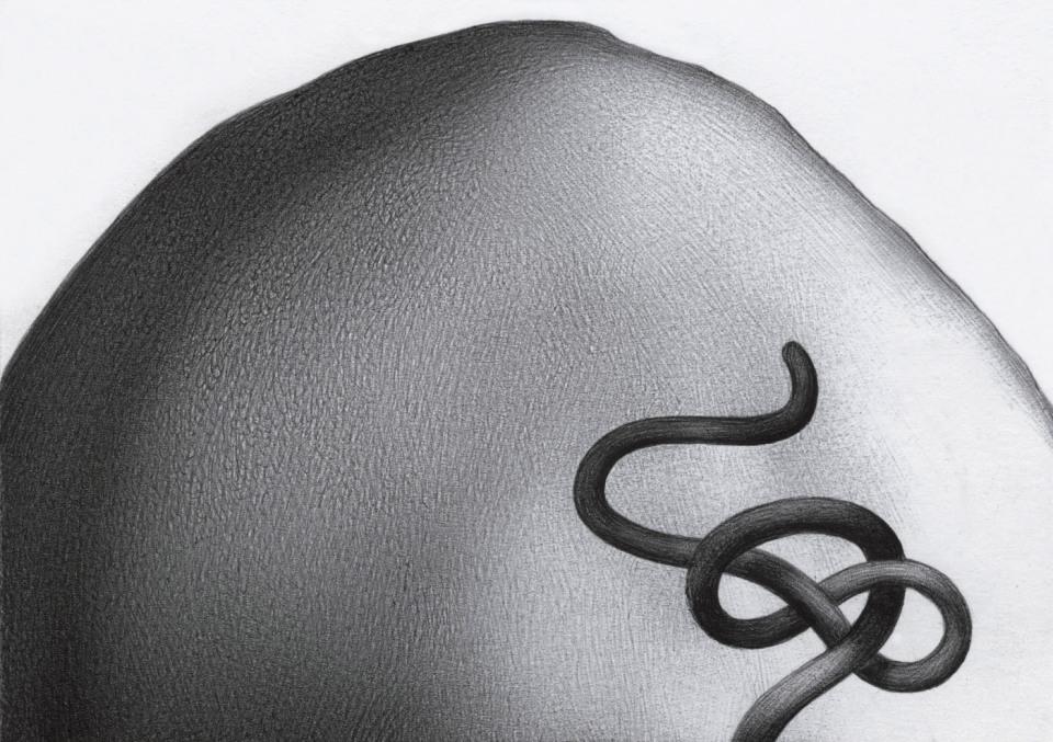 The Knot BS187 | Alberto Repetti Artist
