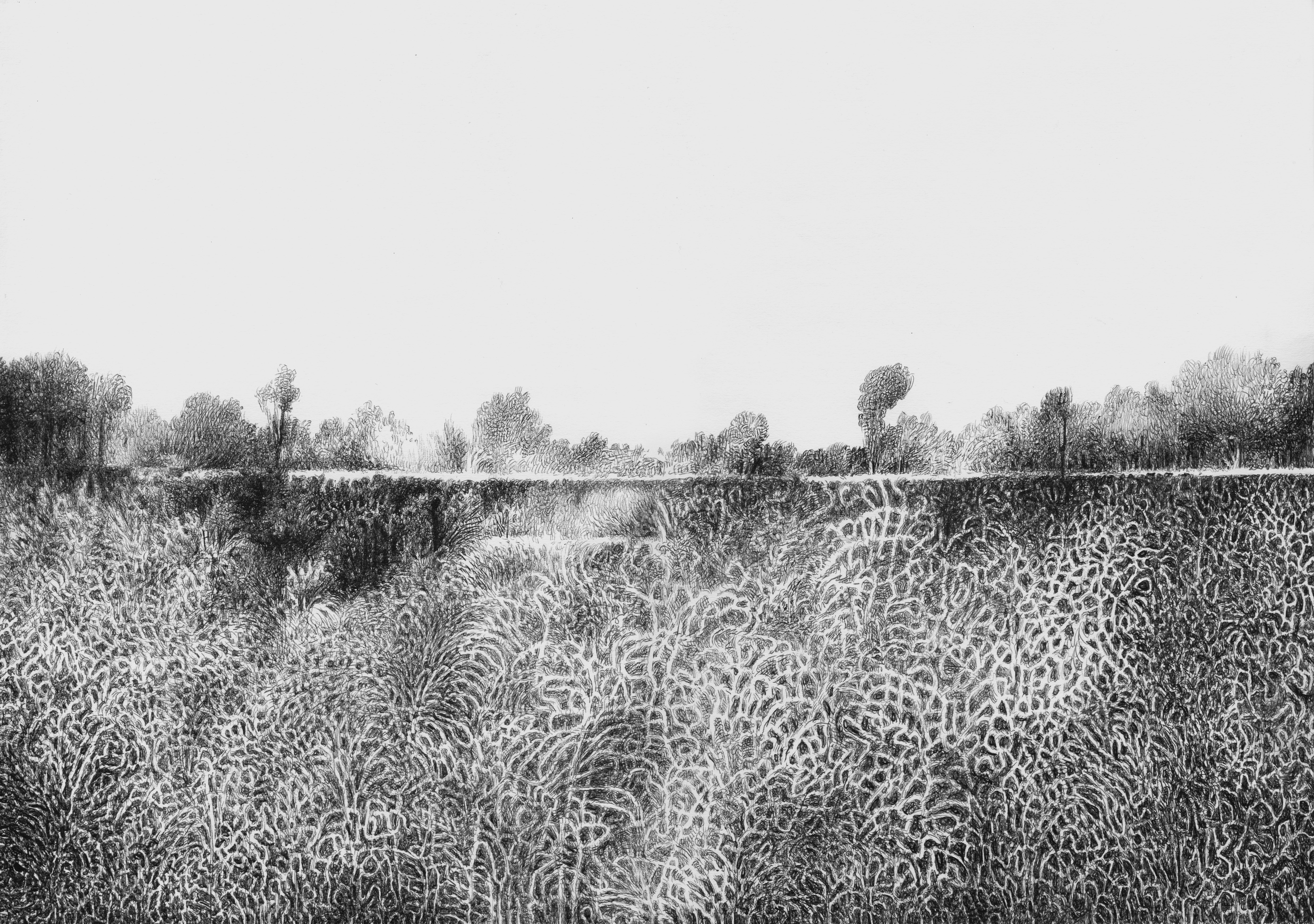 about landscape (Thought number Six)