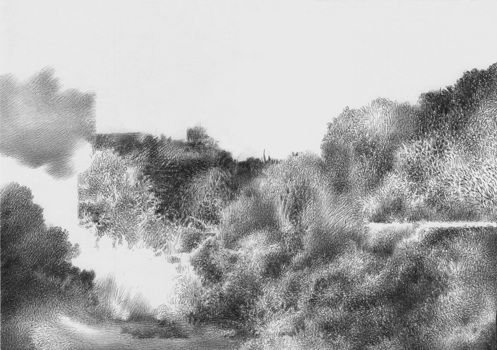 landscape draing, more bushes with white cloud, Ballpoint Pen Drawing on cardboard