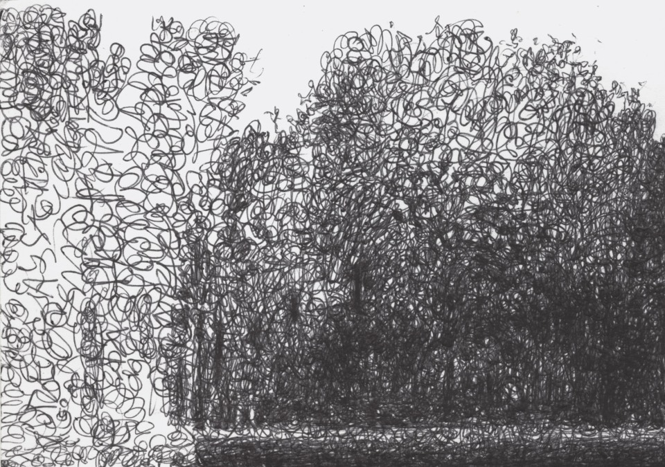 a row of trees and on the left the drawing which has remained incomplete where the hatches and the compositional structure are clearly visible.