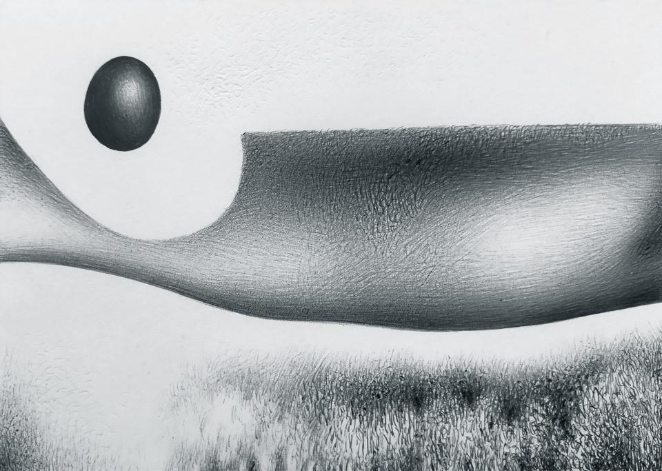 Un campo d'erba con una forma sopra di esso non ben identificata che ha un corpo grande e che si restringe alla sinistra e in mezzo a questo restringimento sollevato in aria c'è un uovo nero